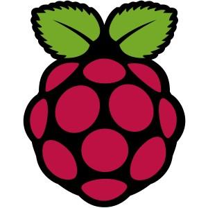 Применение Raspberry Pi в обучении, робототехнике и компьютерных сетях (семинар кафедры ИИО)